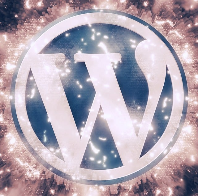 Super Simple Tips to Make Your WordPress Blog a Search Engine Attention Magnet